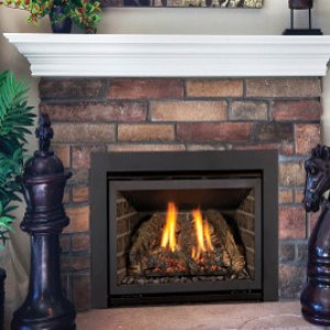 Chaska 25 Gas Burning Insert